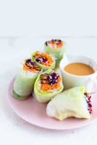 Tofu Summer Rolls with Peanut Sauce