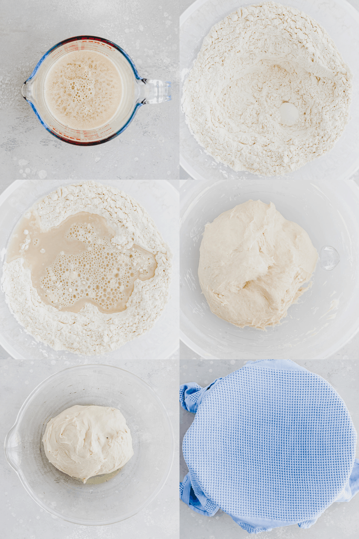 Bagel Recipe Step 1-6
